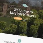 Morton Nursery